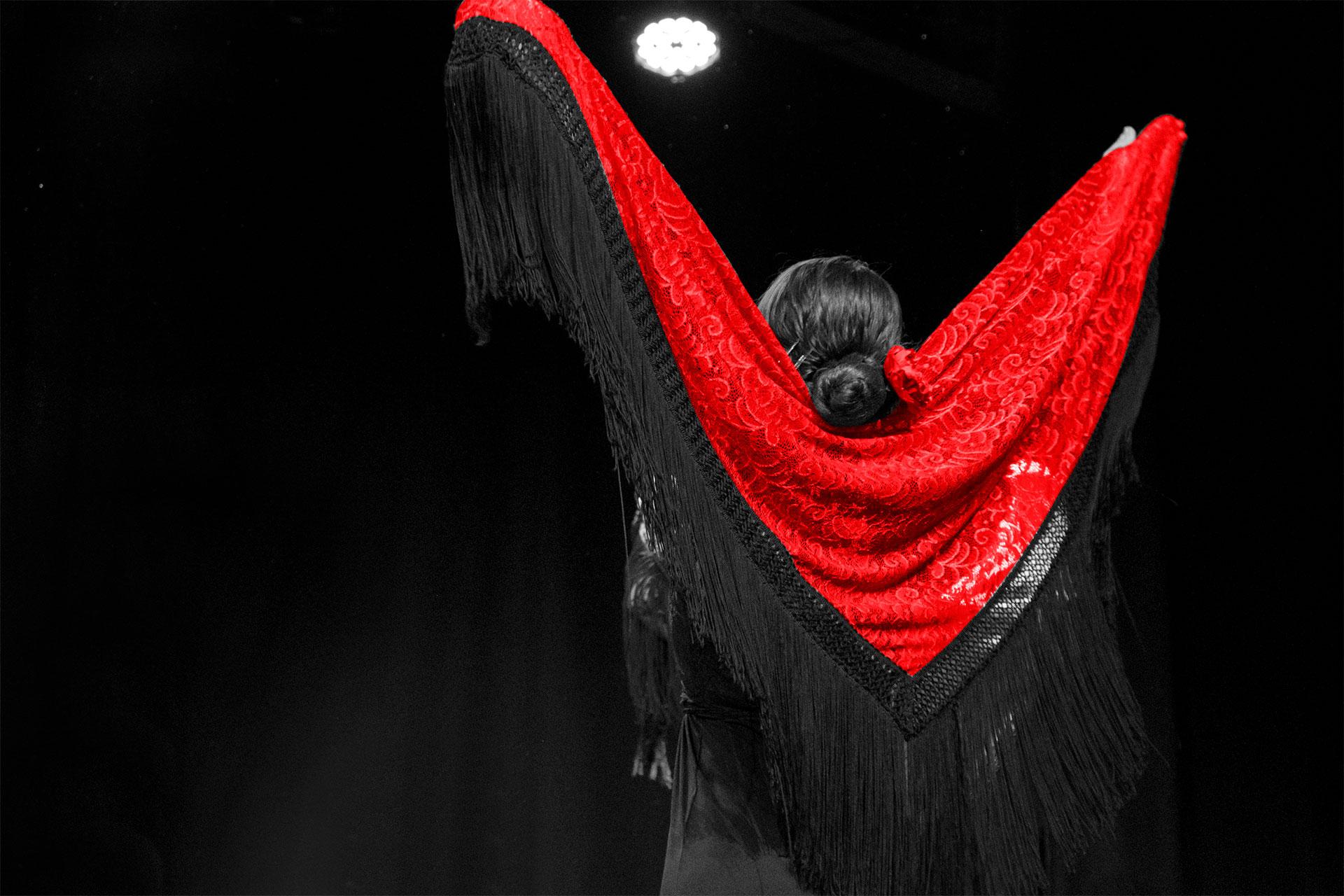 Escuela de flamenco Lucero Cardenas