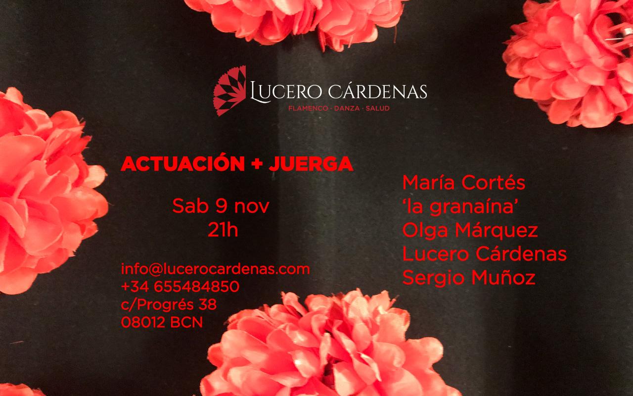 actuación flamenca noviembre Lucero Cárdenas Barcelona